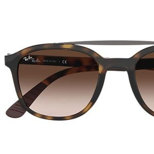 Polarized Raybans, 4290